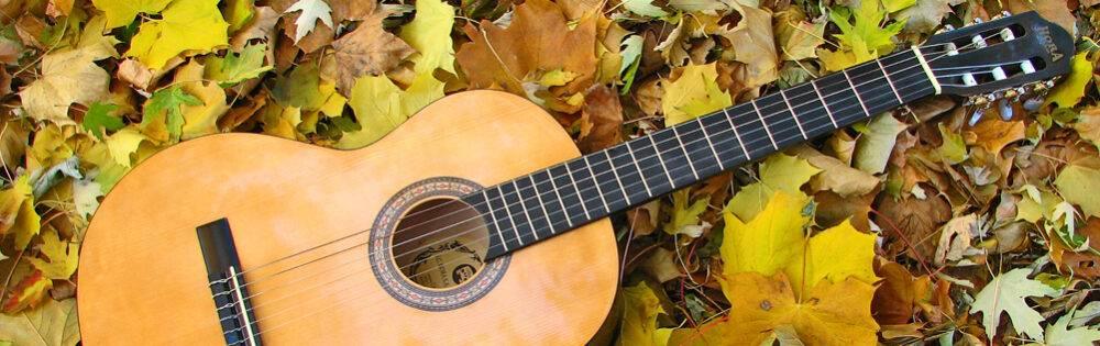 Chitara pe înţelesul tuturor